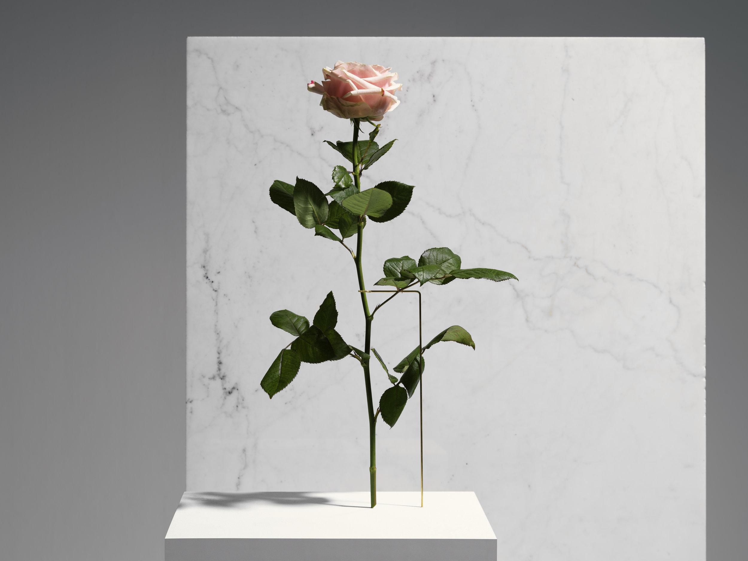 Carl Kleiner X Bloc studios_marble series_plate 5.jpg