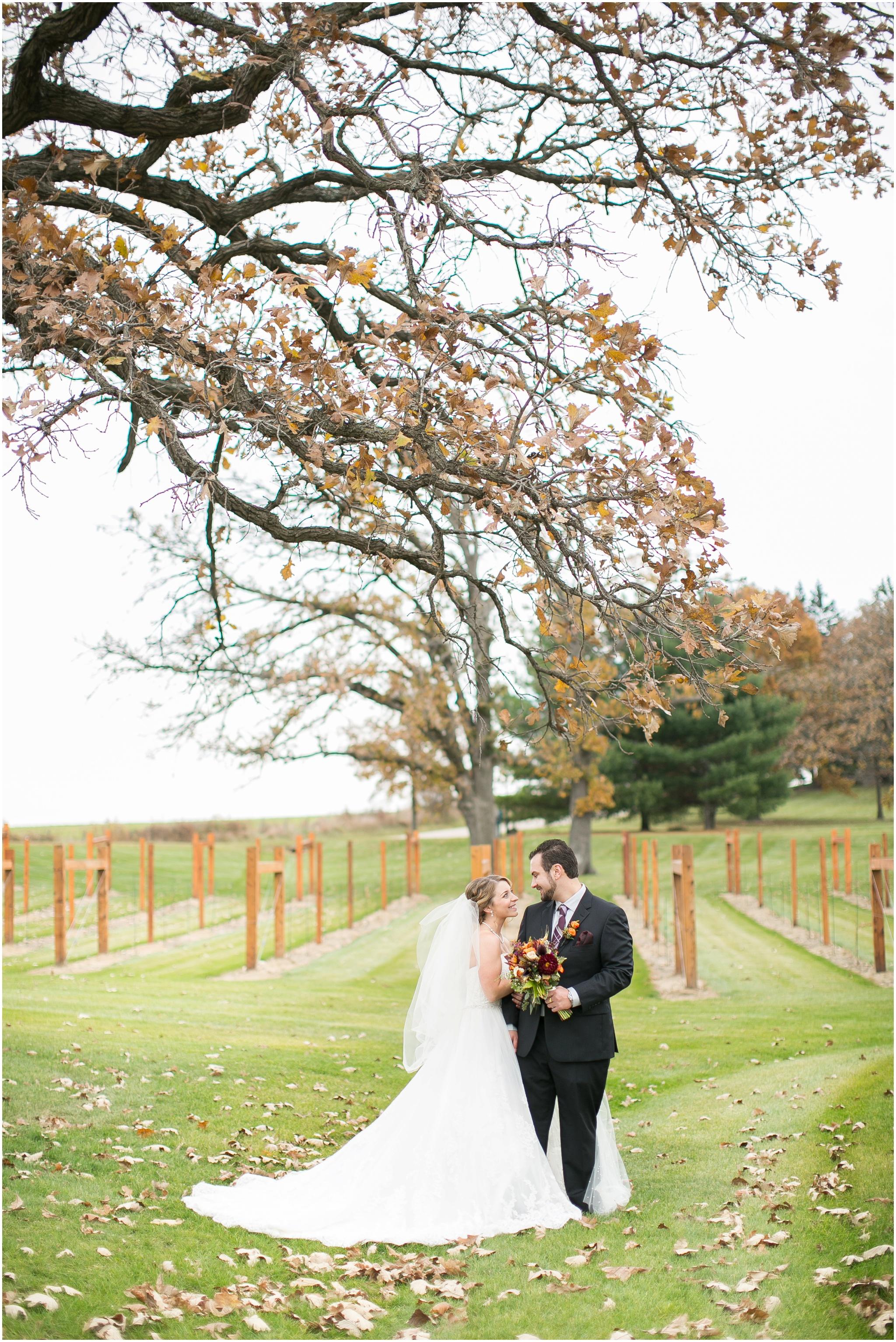 DC_Estate_Winery_Wedding_Beloit_Illinois_Wedding_0045.jpg