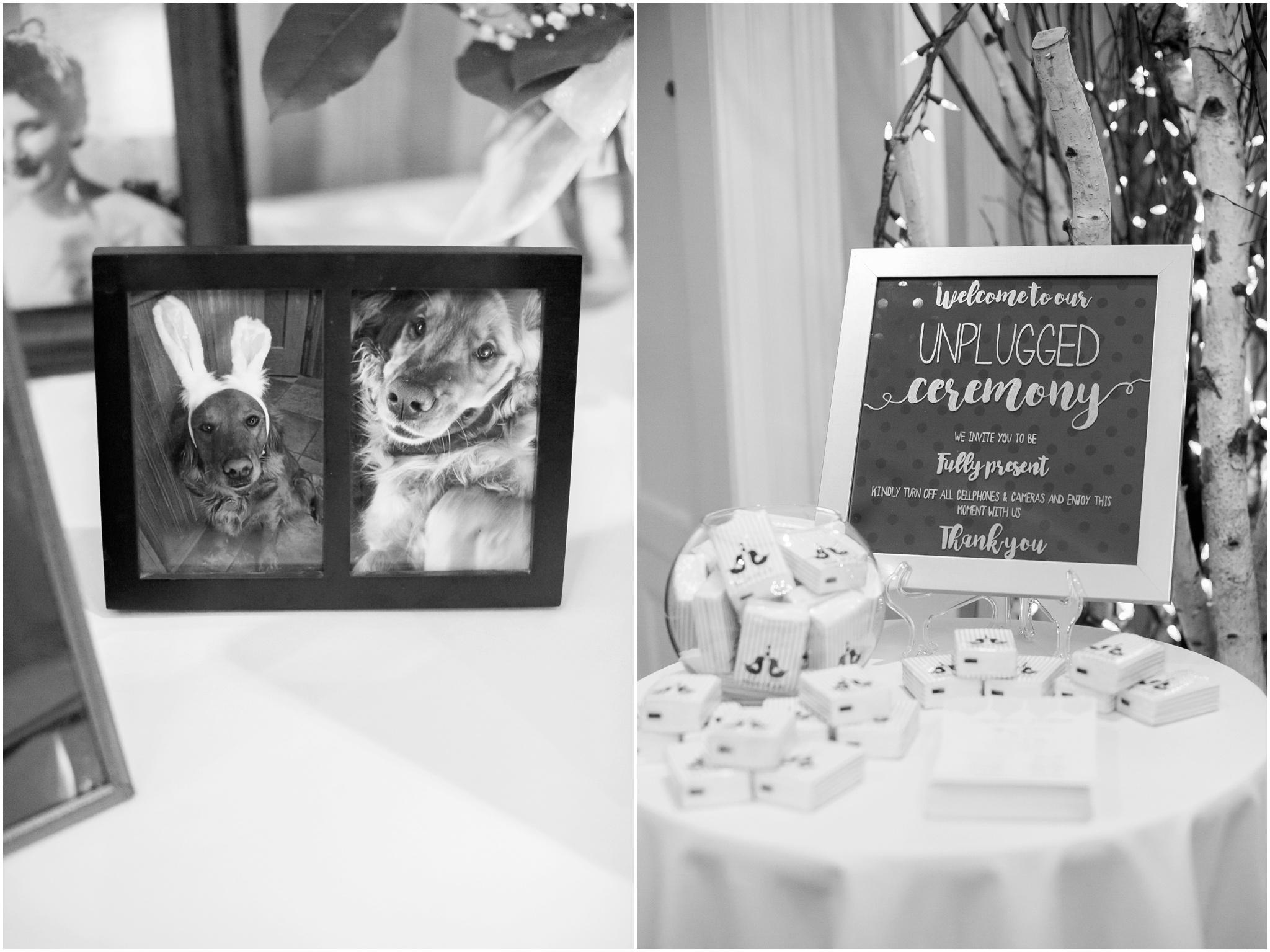 Madison_Club_Madison_Wisconsin_Wedding_Photographer_Spring_Rainy_Wedding_2646.jpg