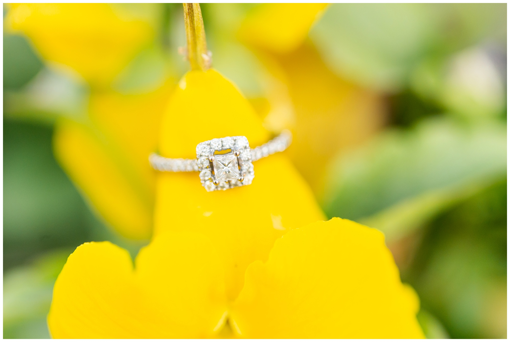 nicholas_conservatory_engagement_session_rockford_illinois_caynay_photo_2993.jpg