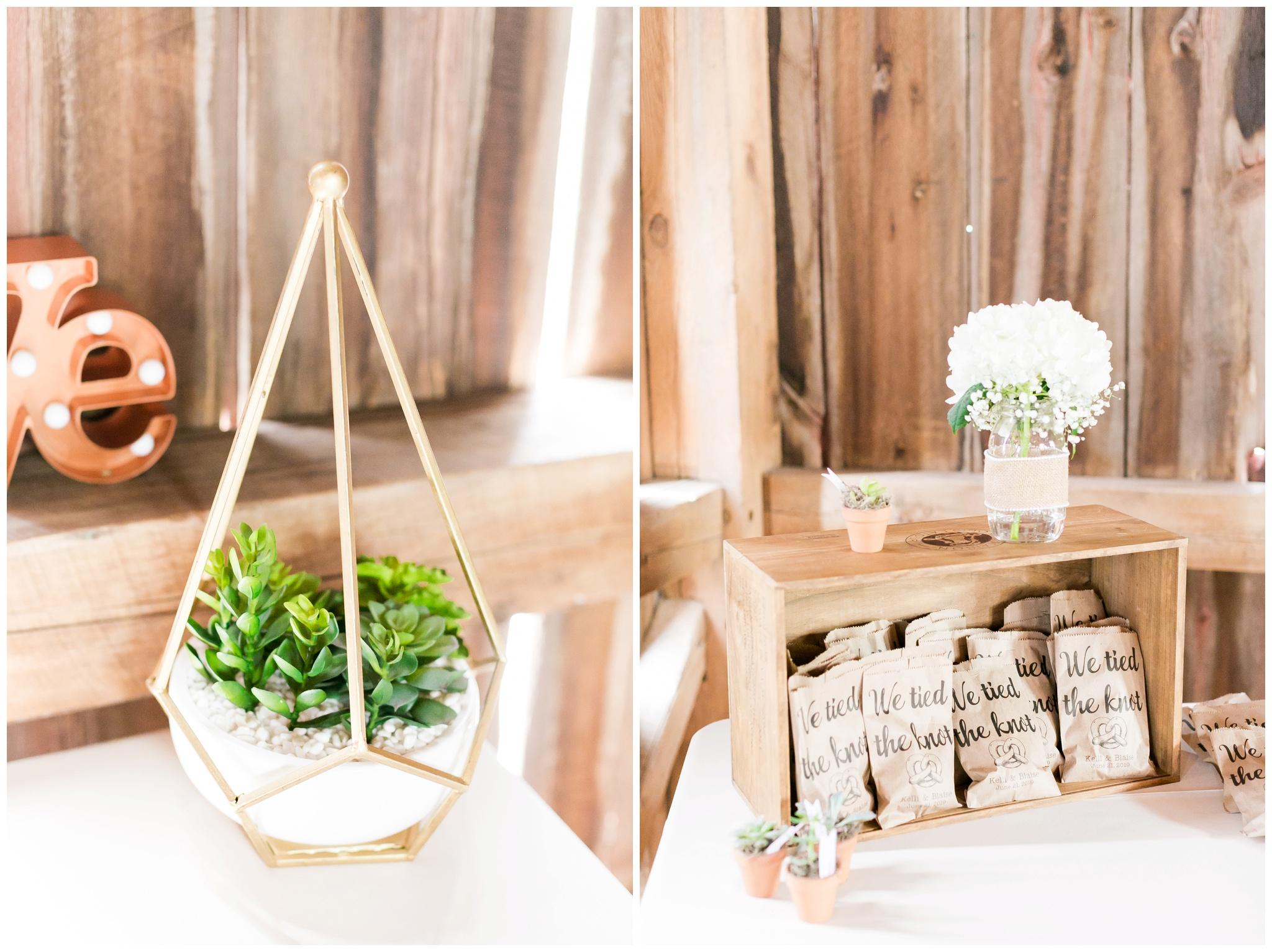 over_the_vines_wedding_edgerton_wisconsin_wedding_caynay_photo_4016.jpg