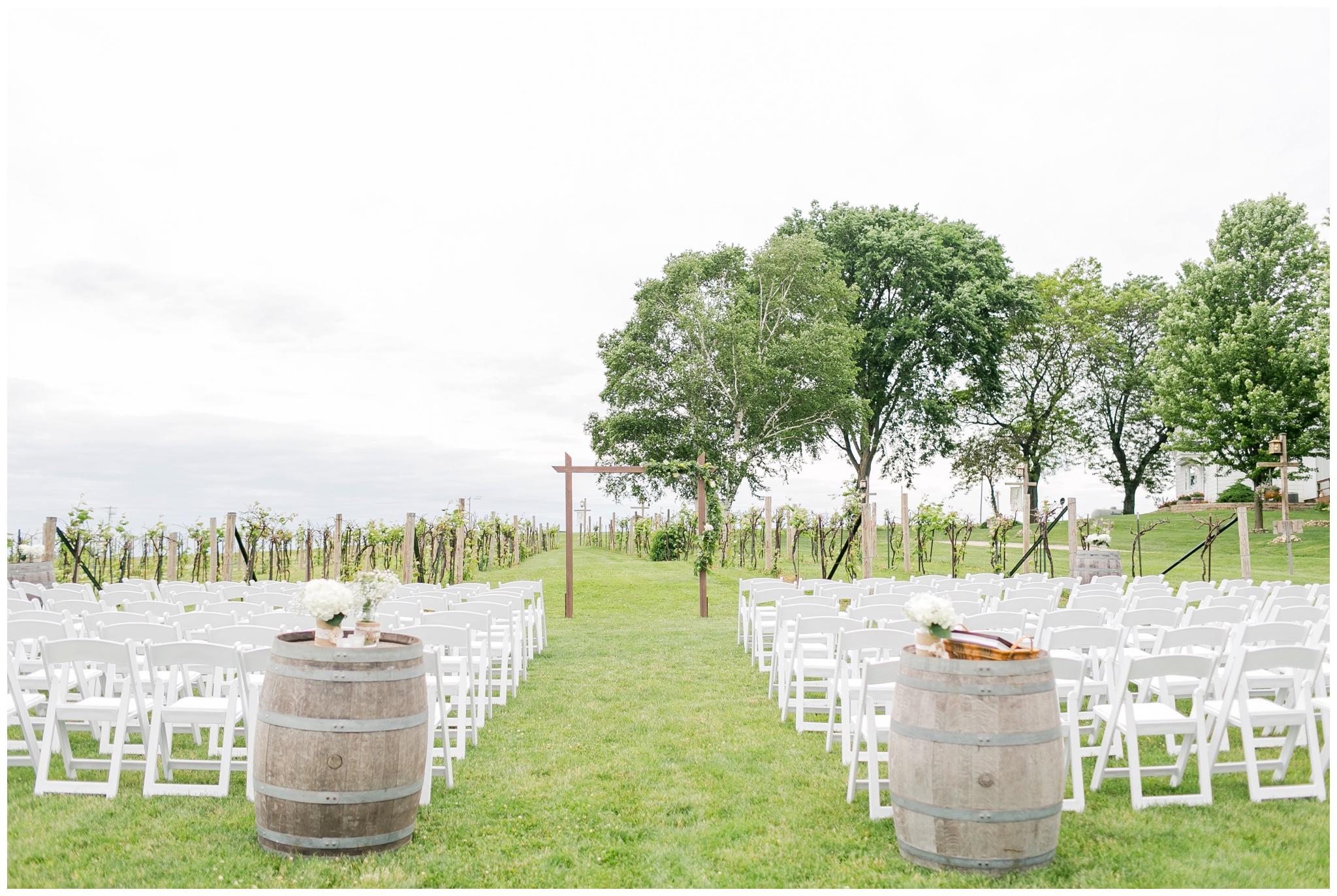 over_the_vines_wedding_edgerton_wisconsin_wedding_caynay_photo_4018.jpg