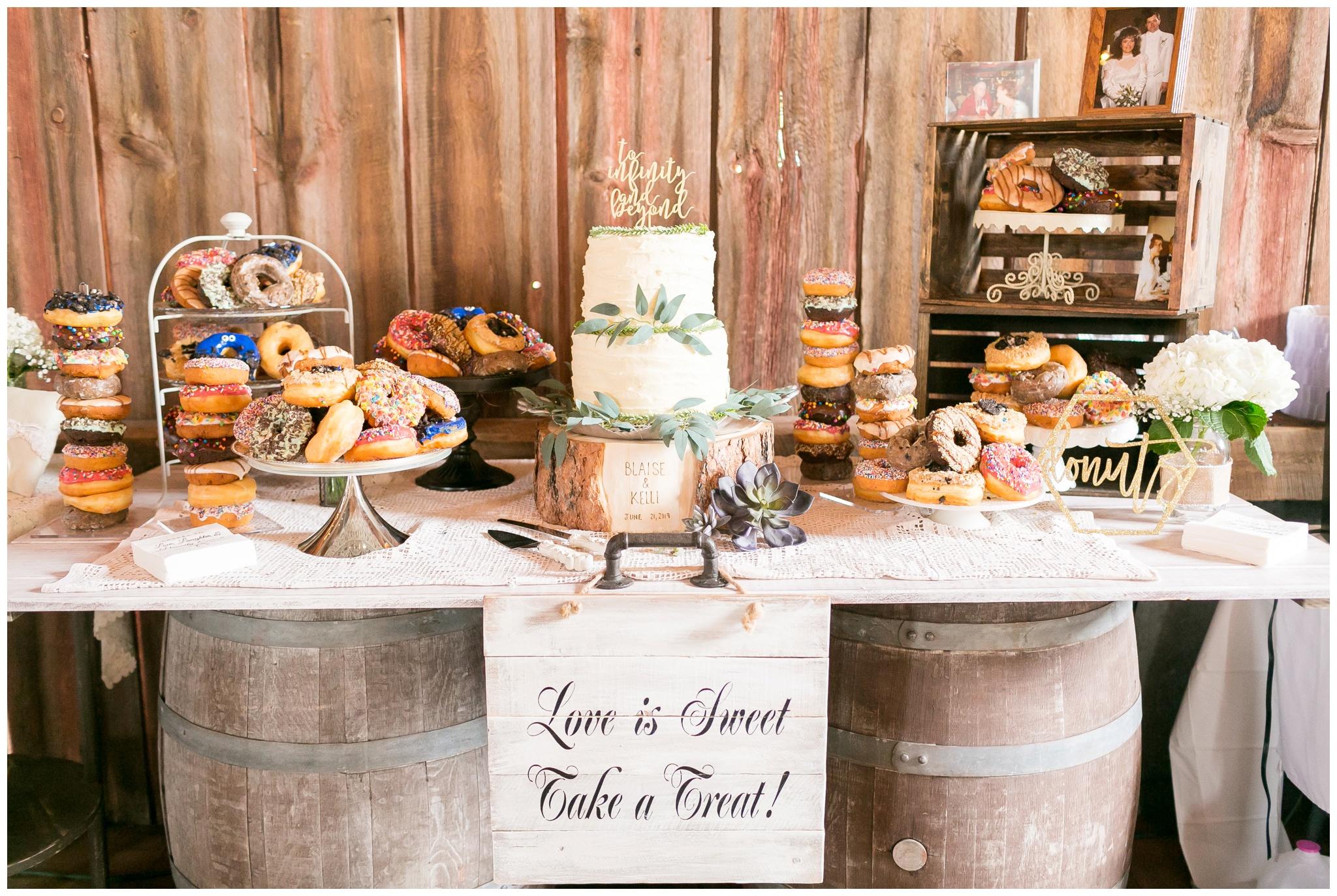 over_the_vines_wedding_edgerton_wisconsin_wedding_caynay_photo_4019.jpg