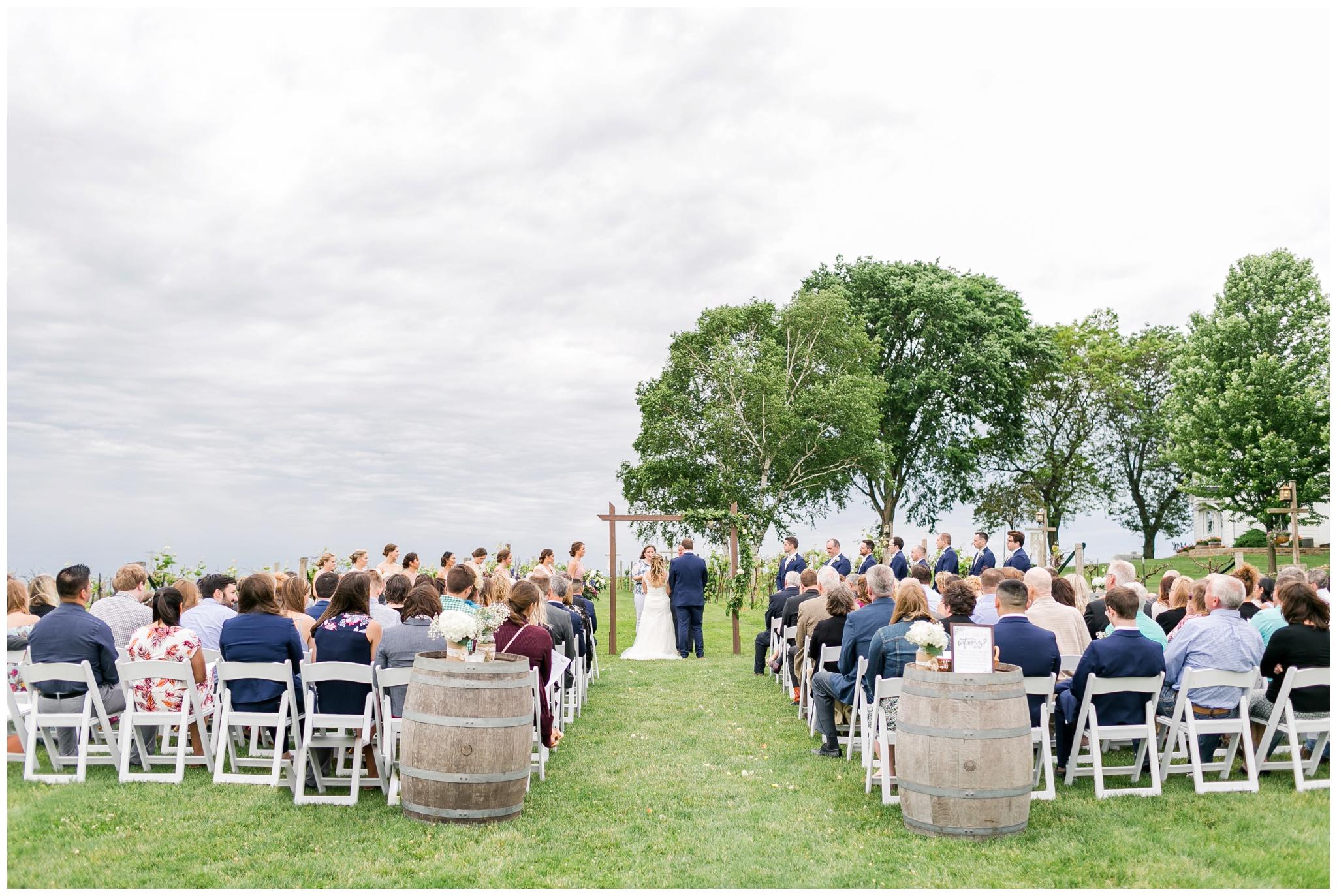 over_the_vines_wedding_edgerton_wisconsin_wedding_caynay_photo_4027.jpg