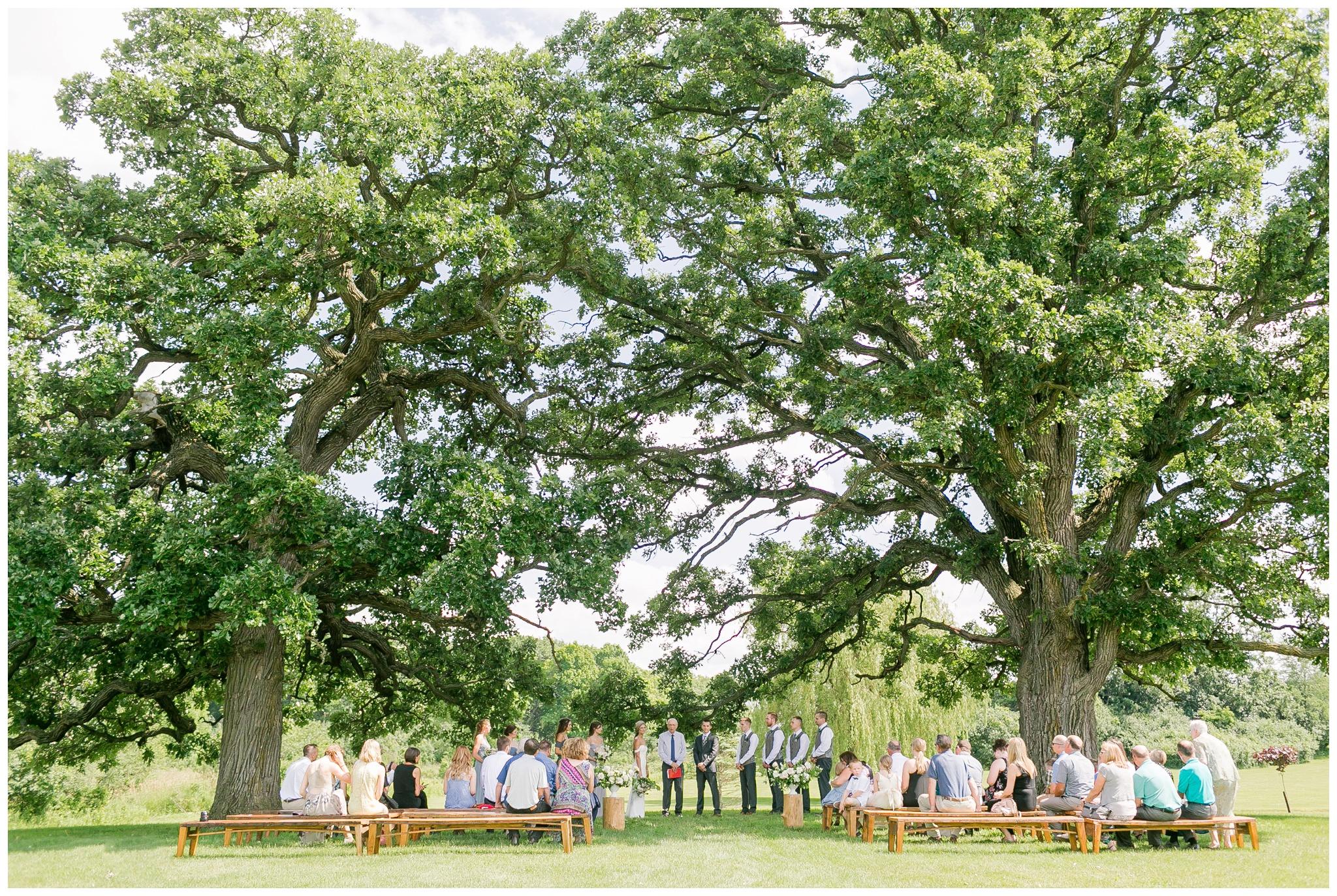 vintage_fields_farmin_betty's_colombus_wisconsin_wedding_briar_loft_3128.jpg