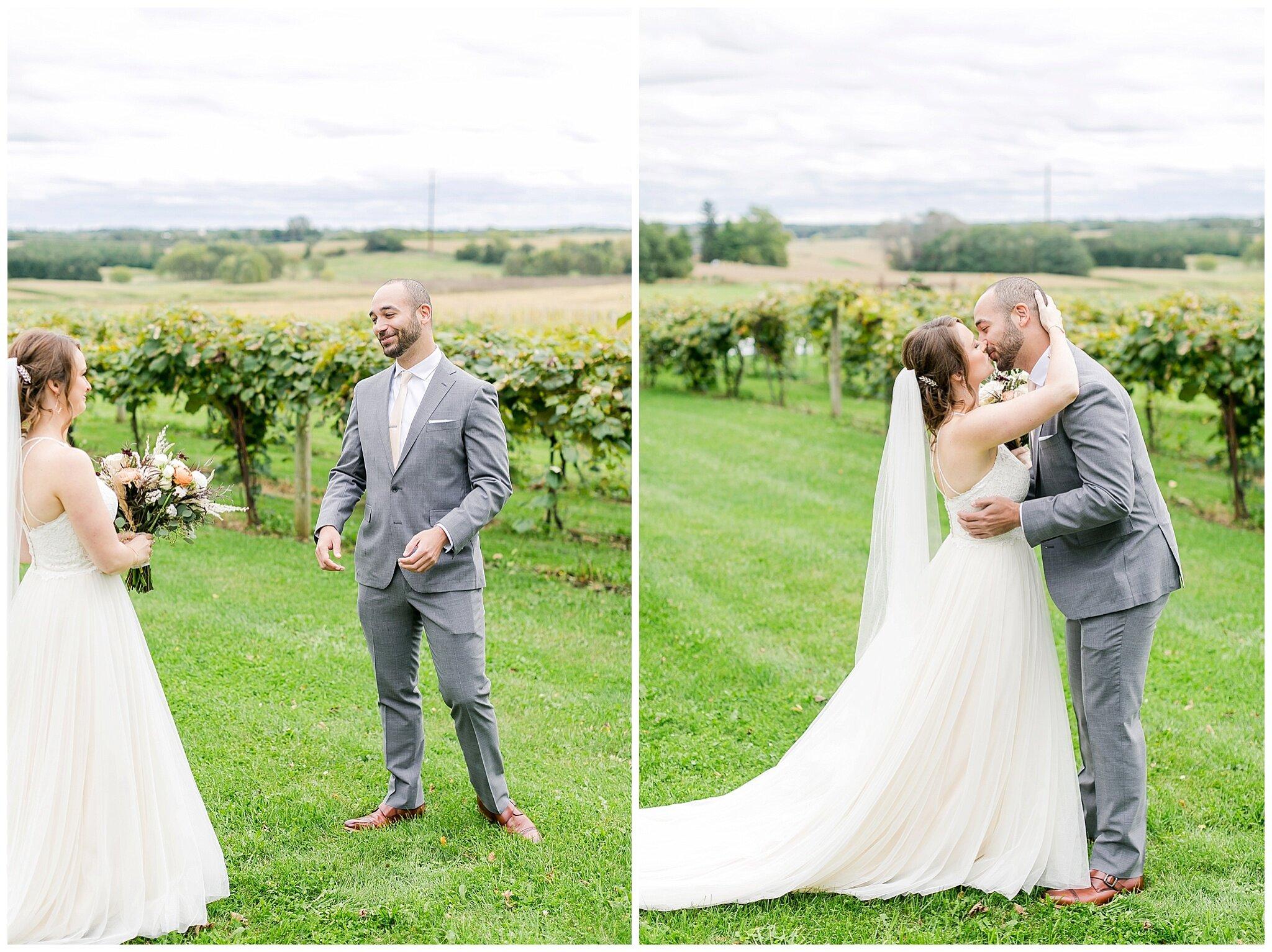 over_the_vines_edgerton_wisconsin_wedding_madison_wisconsin_photographer_0415.jpg