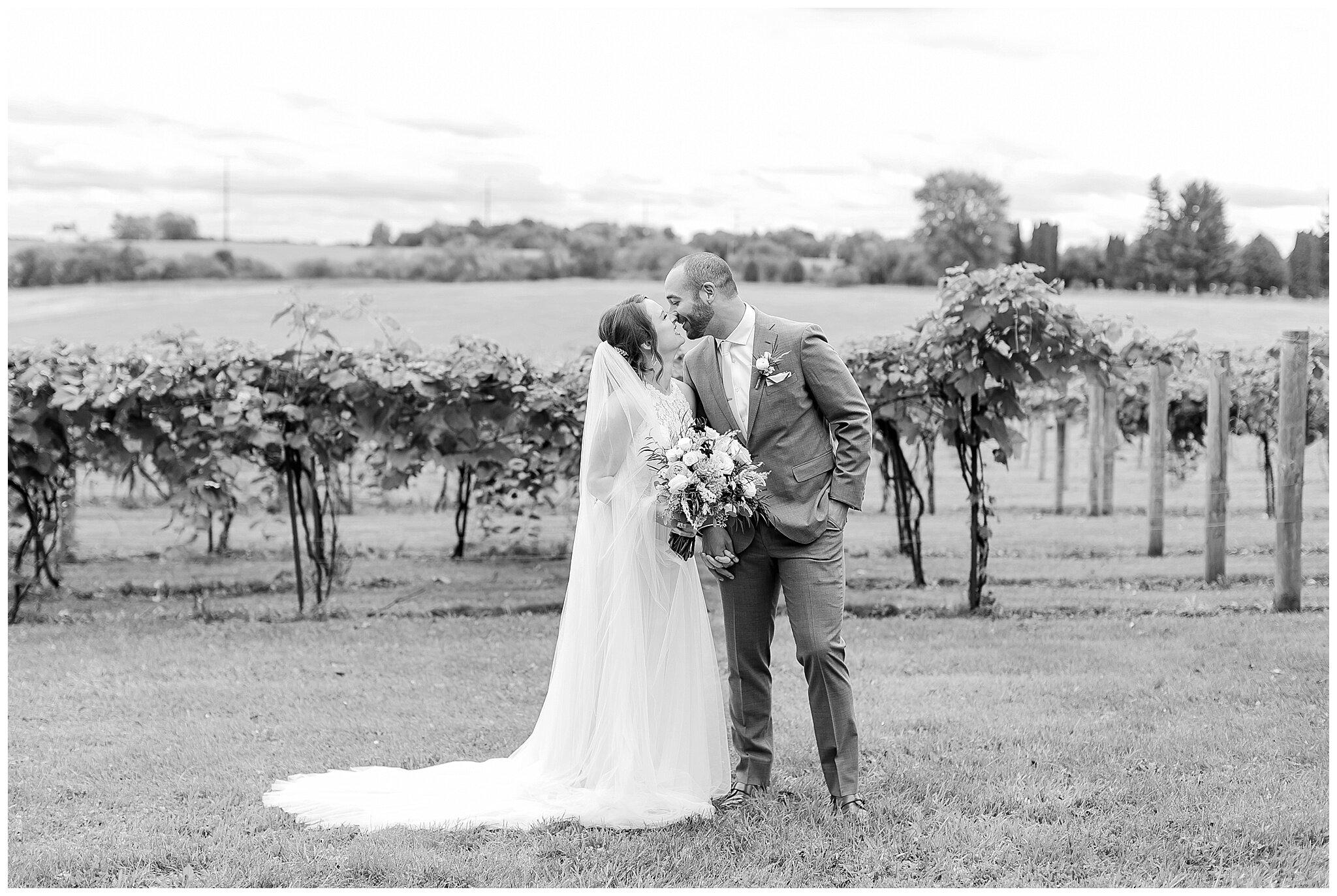 over_the_vines_edgerton_wisconsin_wedding_madison_wisconsin_photographer_0427.jpg