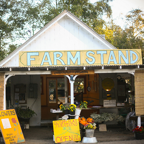 GOSPEL FLATS FARM STAND