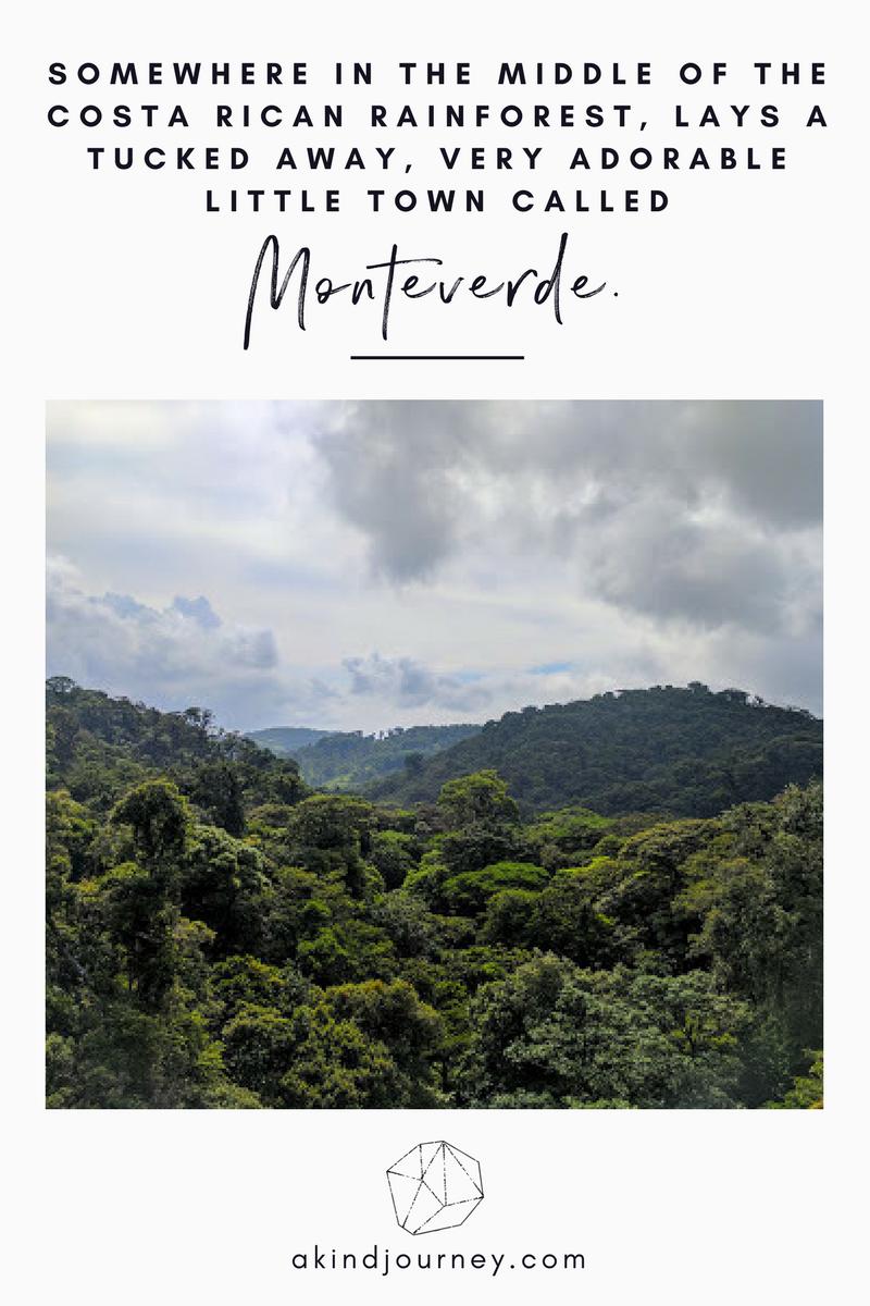 Monetverde, Costa Rica - Blog Post Title Image 2.png