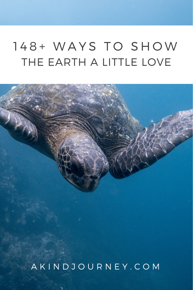 Earth Day: 148+ Ways To Show The Earth A Little Love | akindjourney.com #TheKindBrands #KindImpact #EarthDay