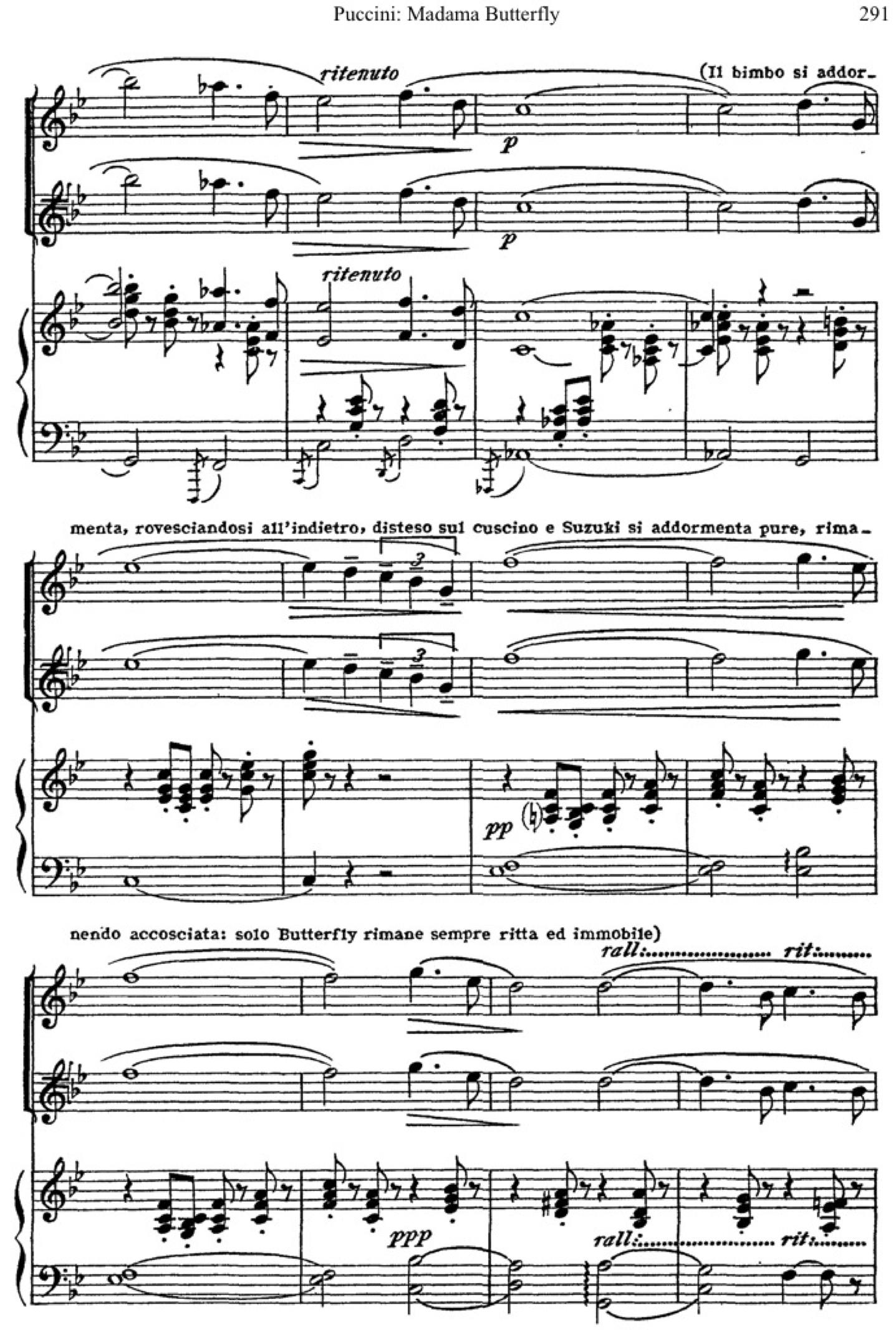 Butterfly Chorus4.jpg