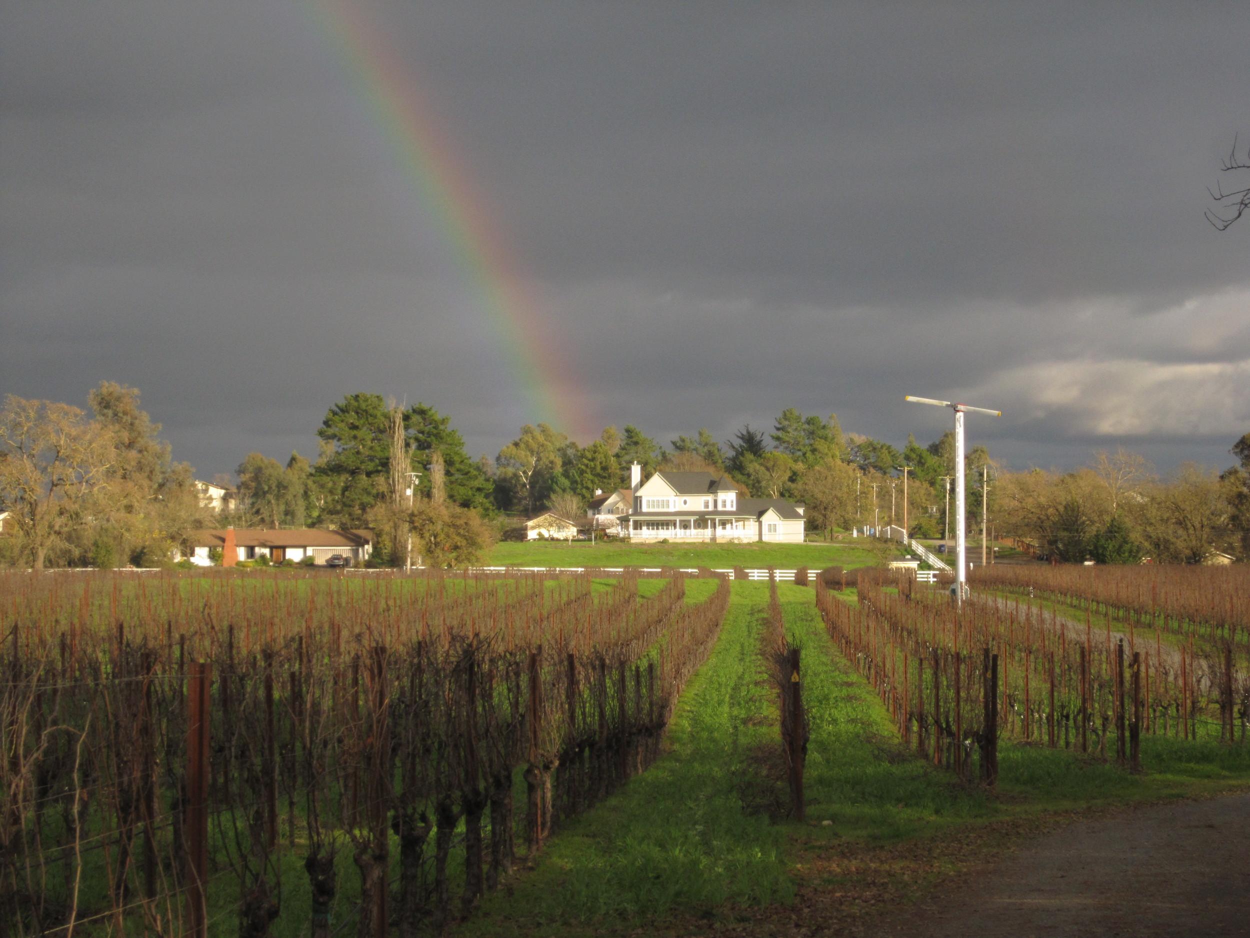 olivet rainbow 1.jpg