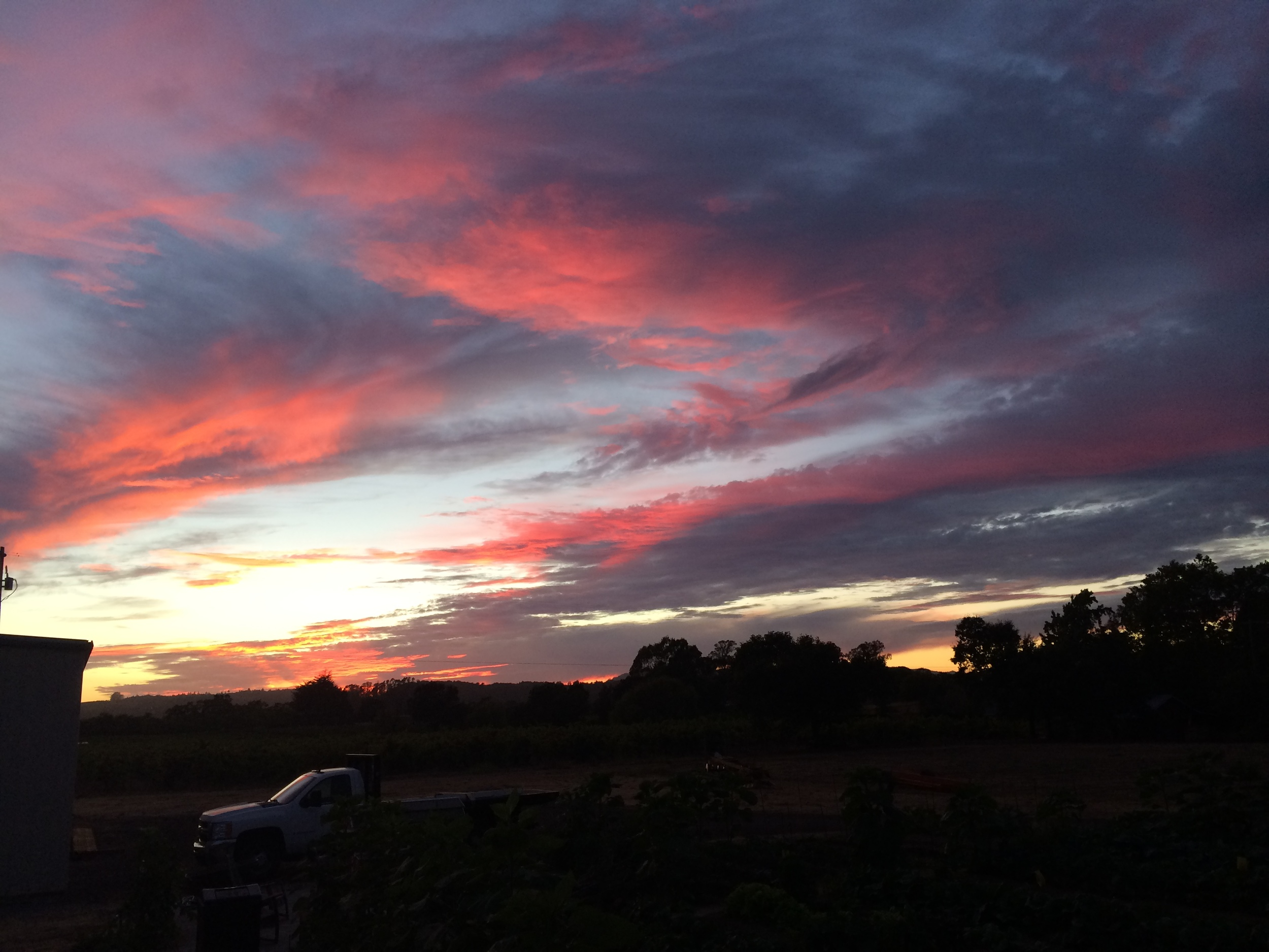 Sunset at Olivet.JPG