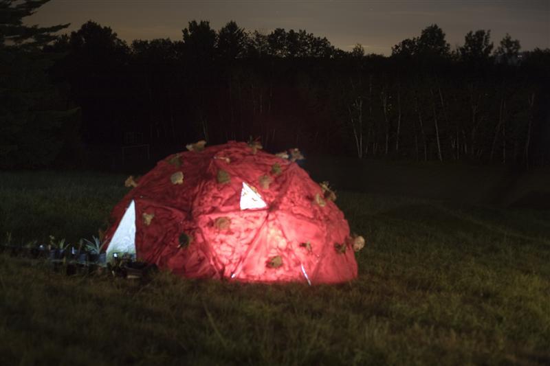 2007 Macro Micro Domes 4.jpg