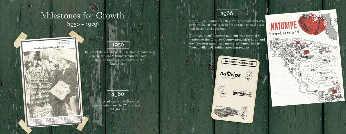 naturipe-100-years_NBG_Page_08.jpg