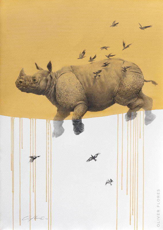 Rhino - Journey No 2  - 2016 - Charcoal and watercolour on paper - 28x20 in / 70x50 cm