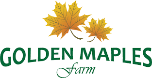 Golden Maples logo.png