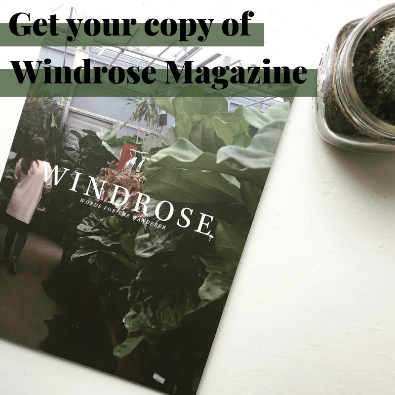 Windrose -- Issue 2 Get Your Copy Graphic.png