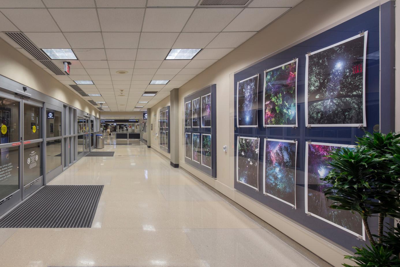 "Installation View / Terminal 2 / San Diego International Airport Plexiglass Containers 7x7' each image 20x30"""