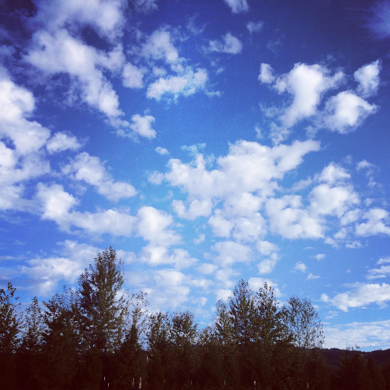 Blue, blue skies.