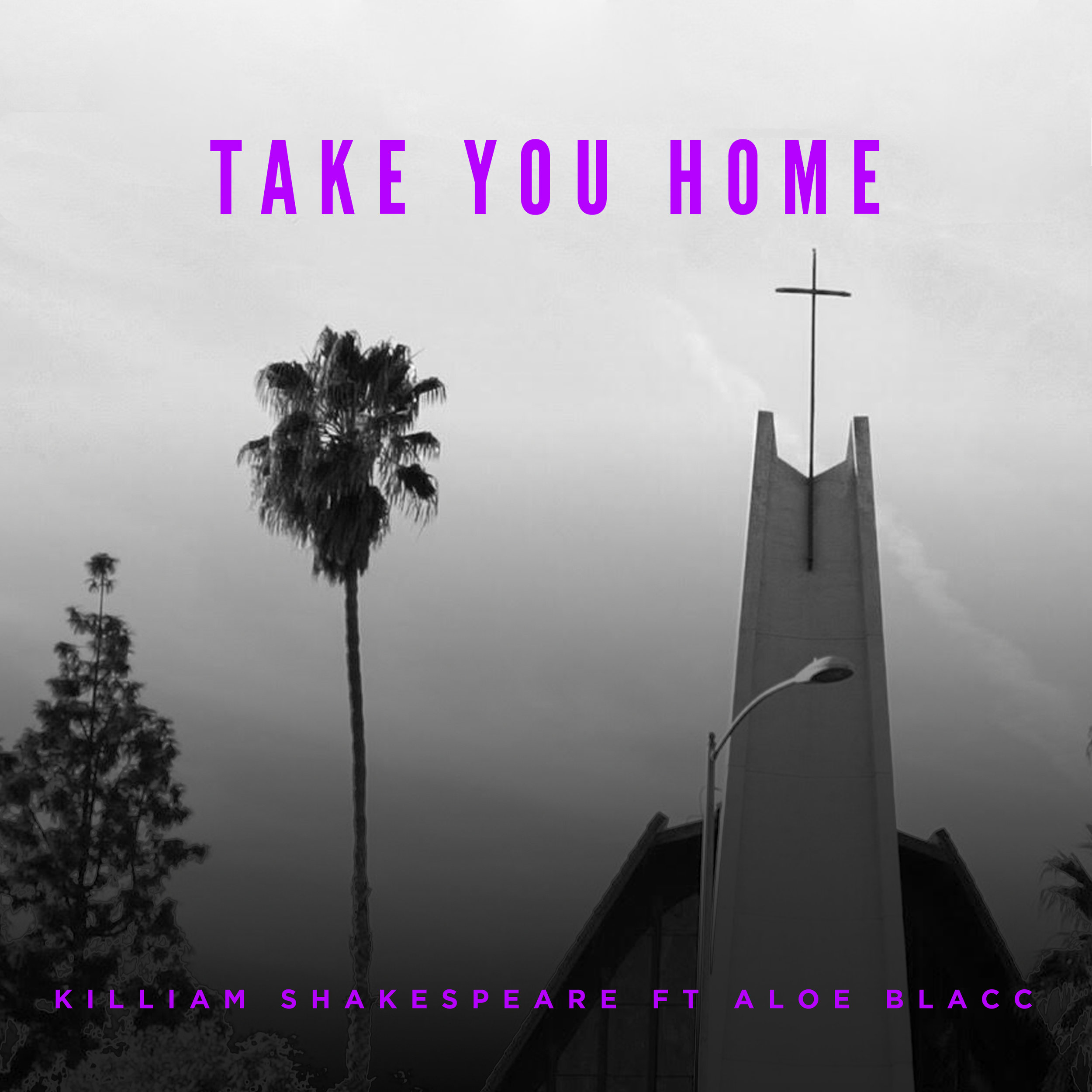 Take You Home - Single - FT.  ALOE BLACC