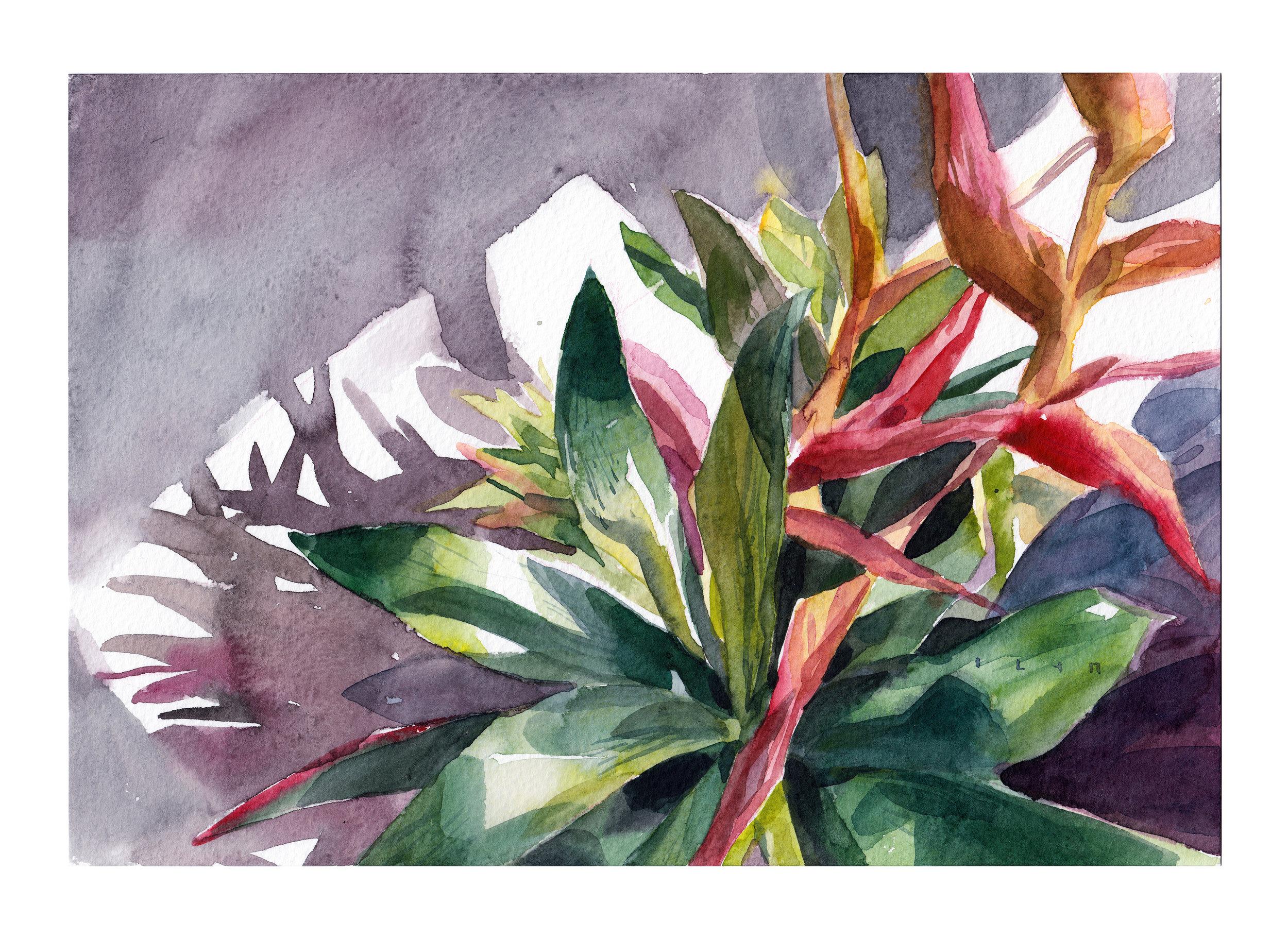 Gabi'sSunset_7.5x11_watercolorcoldpressed_300.jpg