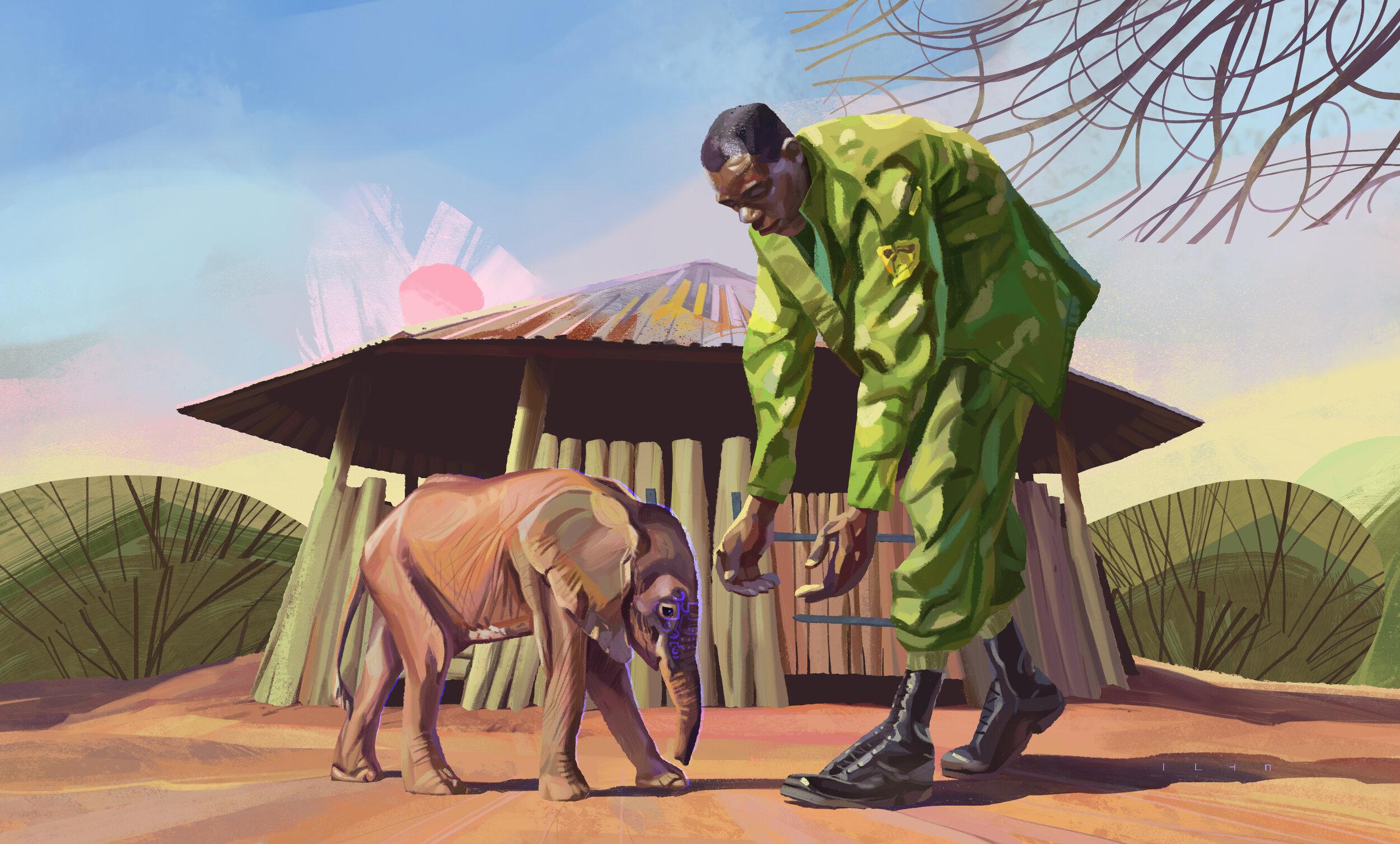 ElephantSanctuary.jpg