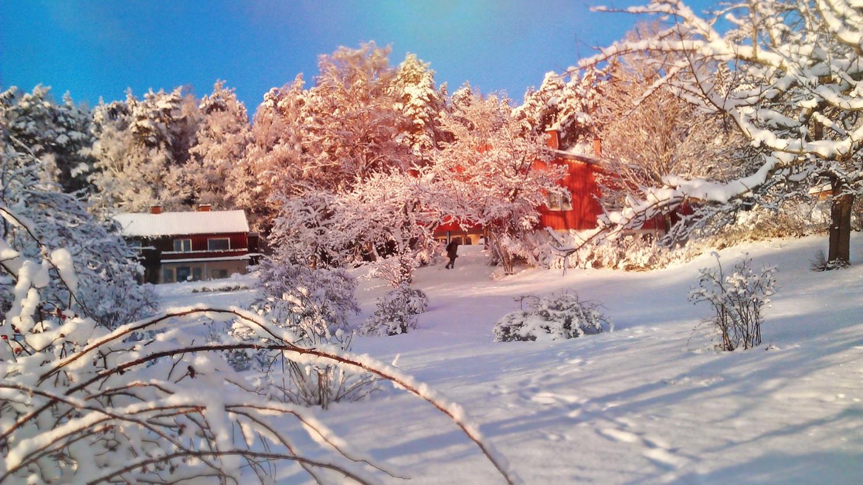 Om du går runt hörnet på Arken ser du detta; rosenträdgården med snötäckta rosenbuskar, och Stora Solberga, det röda huset till höger. Där finns bl.a. en matsal där barnen äter mellanmål då de är i skolan, ett av våra klassrum och bildsalen.Det är i bildsalenvår nästa aktivitet äger rum.