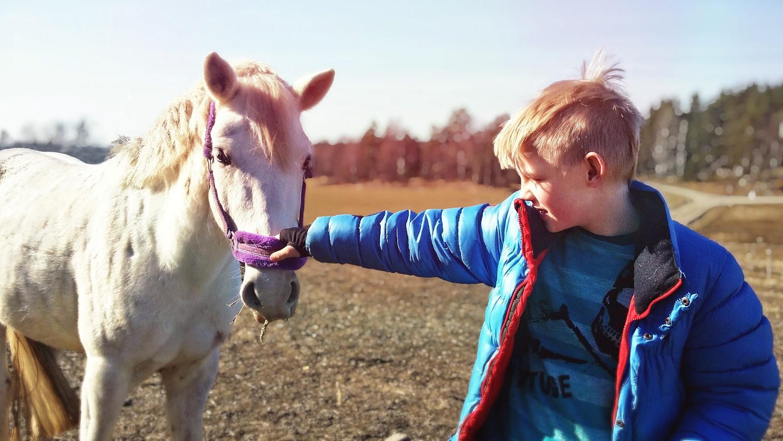 Om det varit för kallt för att rida på vintern så sätter ridningen definitivt igång igen nu på våren, till allas glädje.Att ha en nära relation till ett djur kan gemycket. En del av barnen kan ta hand om djuren helt självständigt.