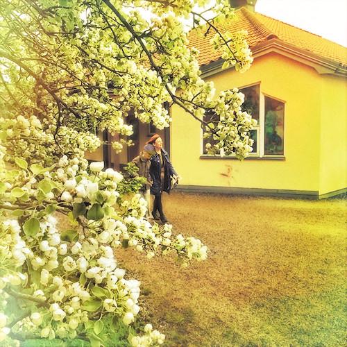 En promenad här kan därför vara en upplevelse för många sinnen, och skolklasserna börjar vara utomhus mer igen.