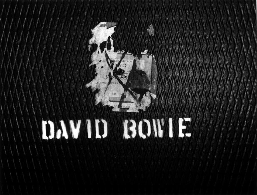 DAVID06_.jpg