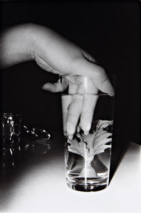 photograph by Nobuyoshi Araki