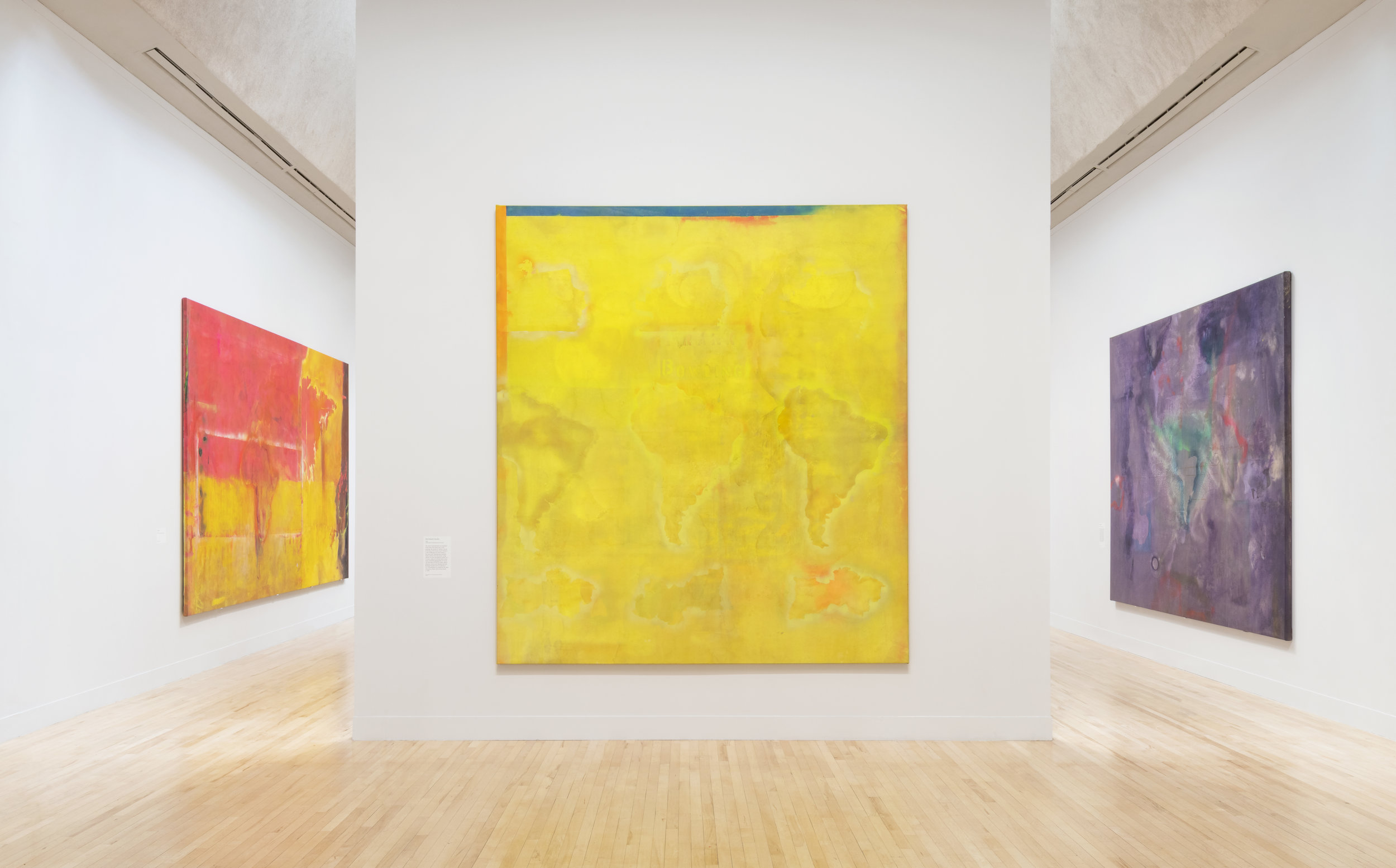 Installation View,  Frank Bowling  at Tate Britain (31 May - 26 August 2019). Tate Photography, Matt Greenwood