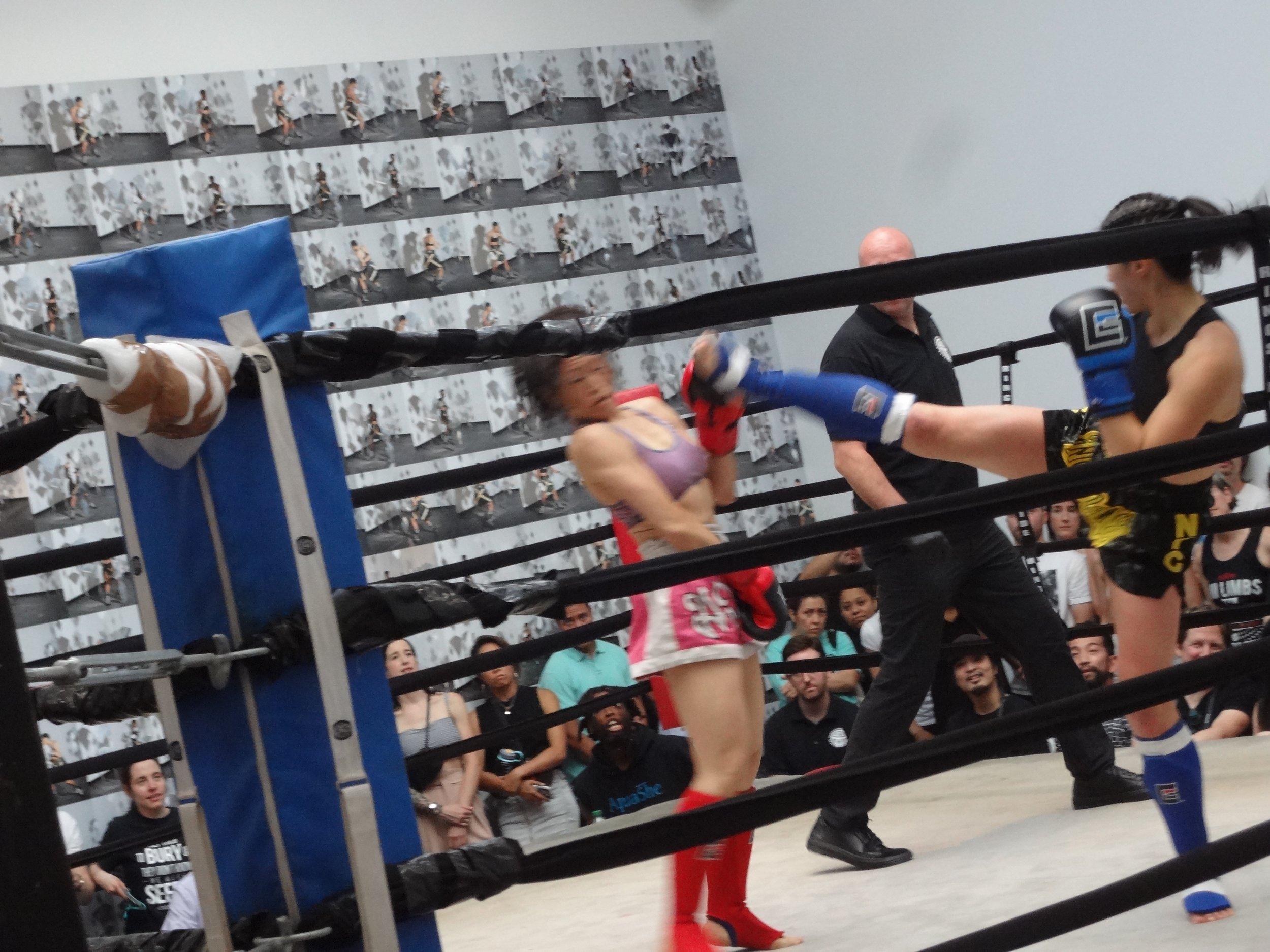 fight5.jpg