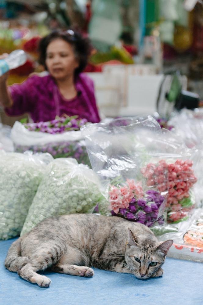 Thailand-travel-photography0020.jpg