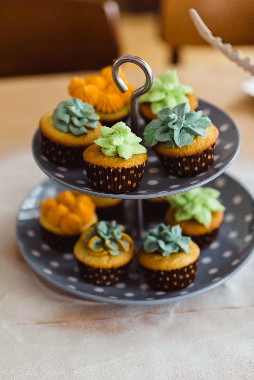 Succulent Cupcakes-3.jpg