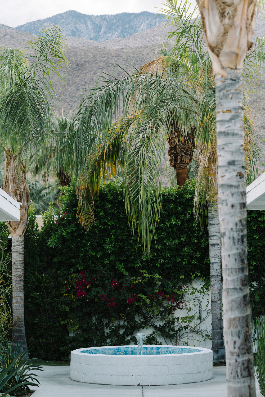 Palm Springs Wedding Honeymoon-6.jpg