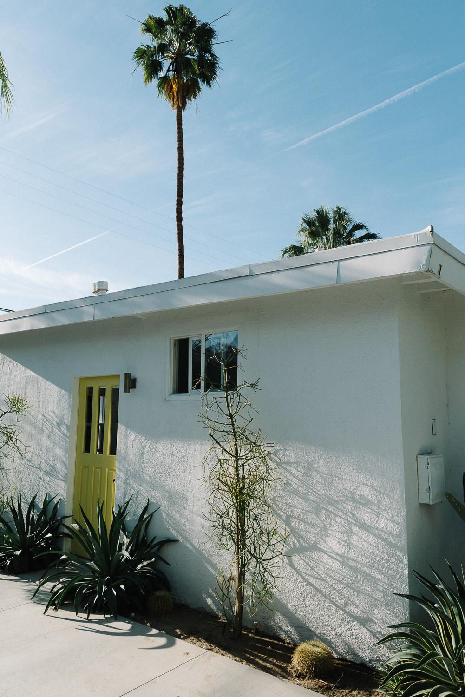 Palm Springs Wedding Honeymoon-15.jpg