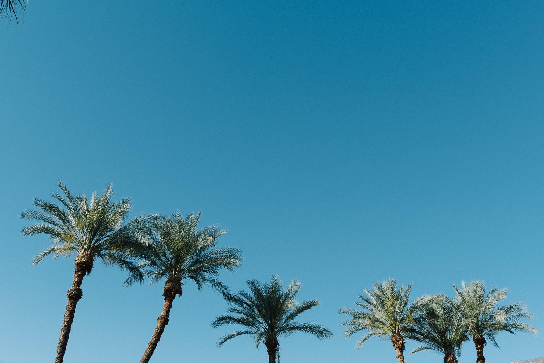 Palm Springs Wedding Honeymoon-5.jpg