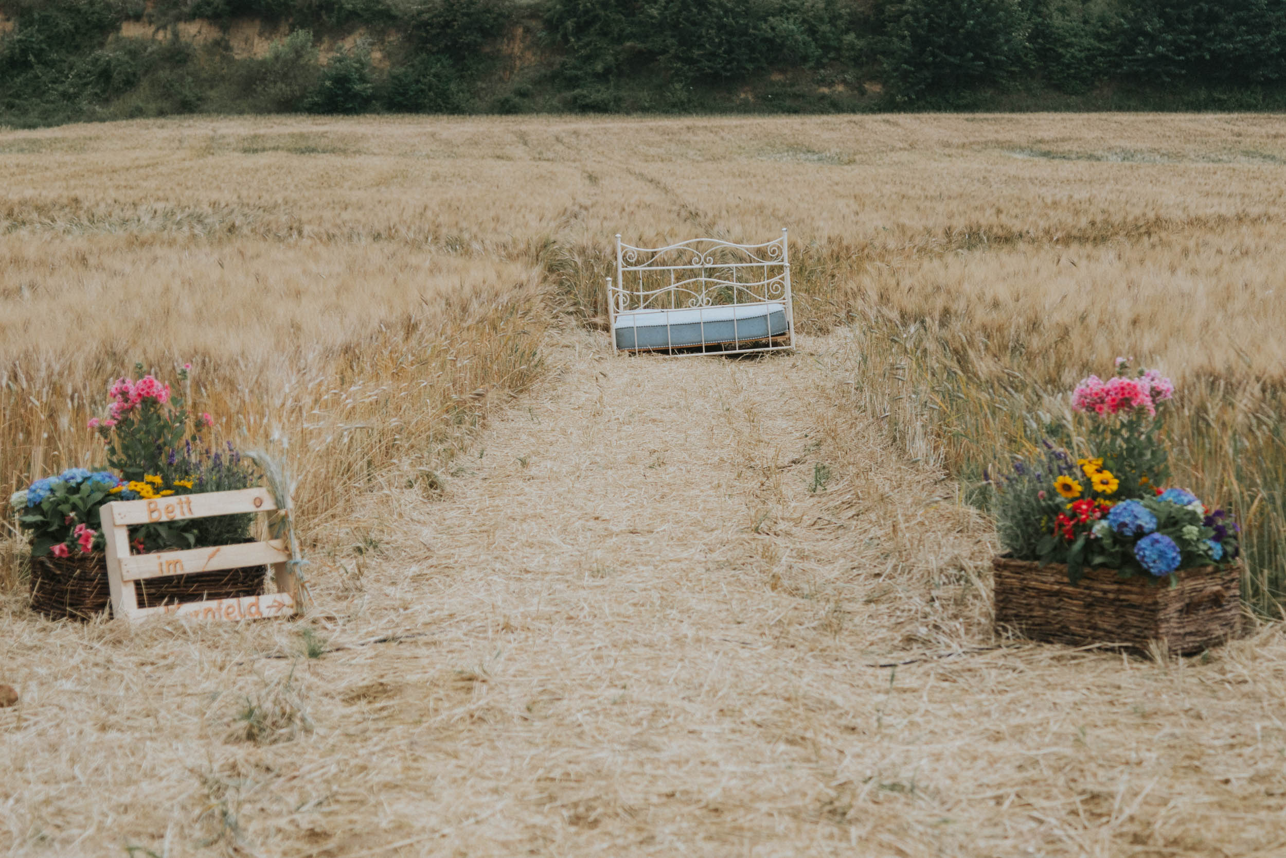 belle&sass_yamyam_cornfield wedding_understated_wedding-6.jpg