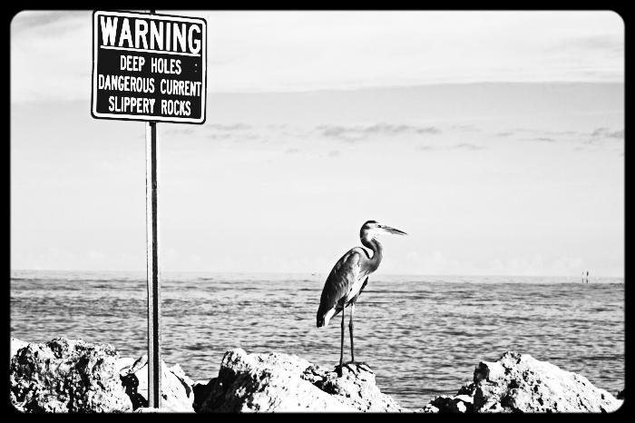 Photo of warning sign at beach.