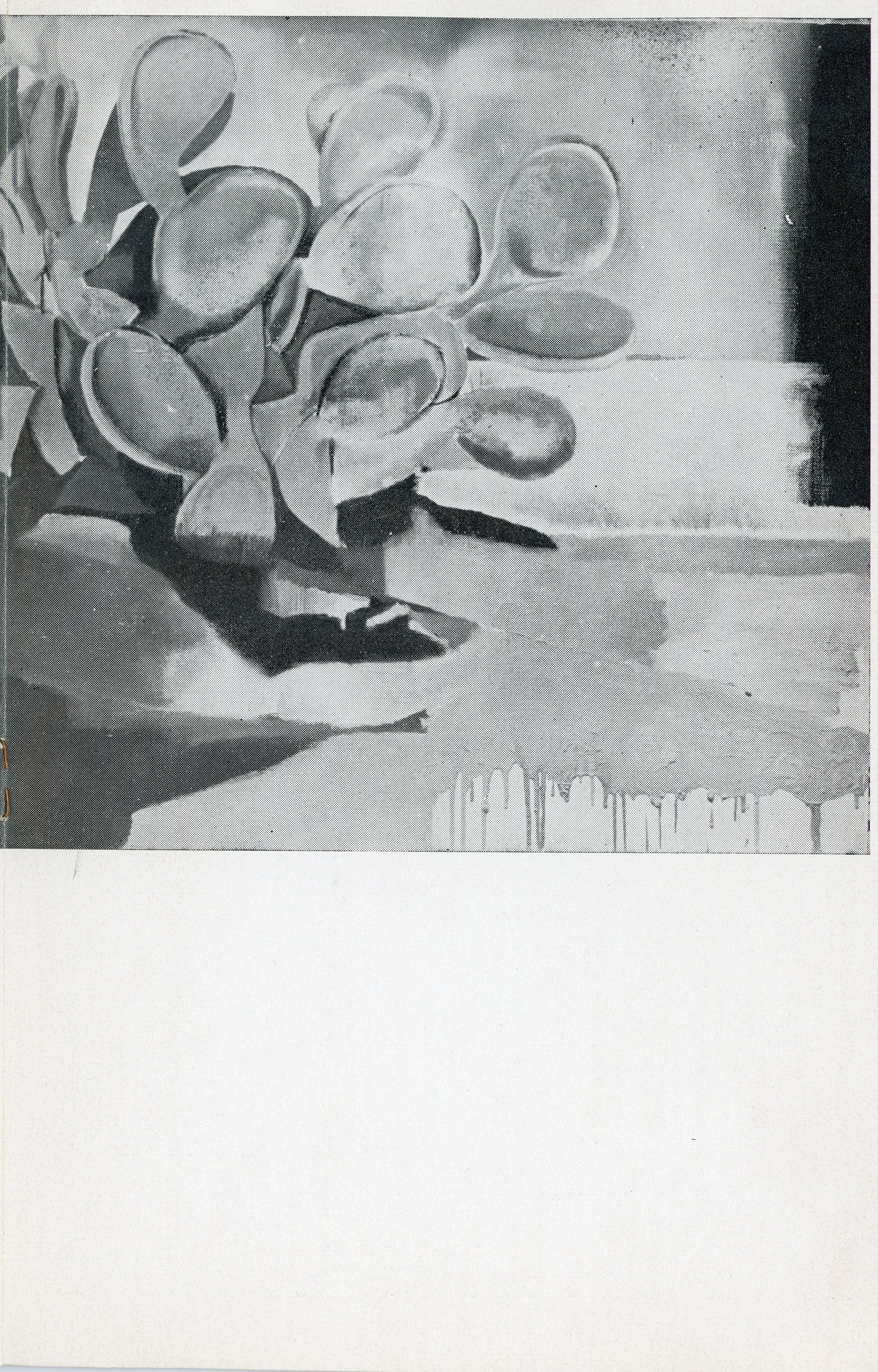 1963-03 Galleria don Chisciotte - Bruno Caruso_06.jpg