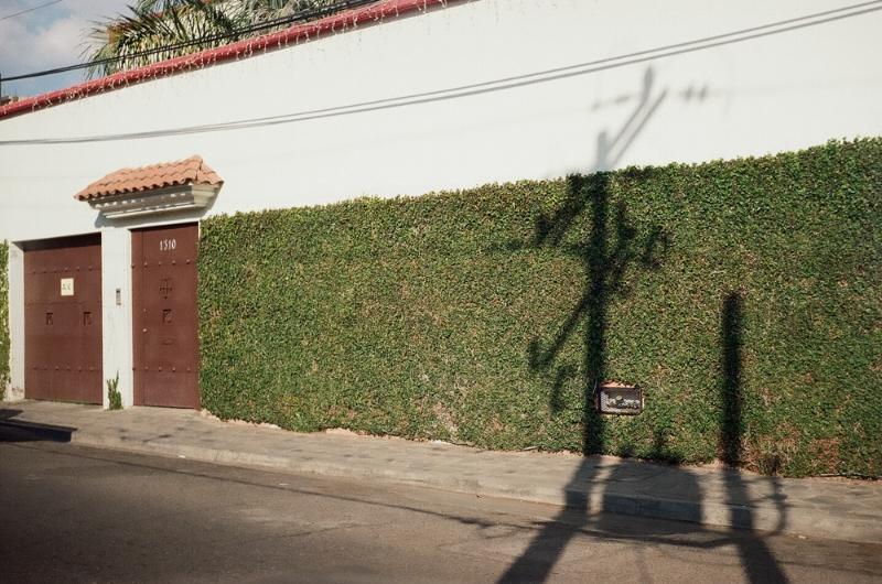 Smena 8M, 35mm film Oaxaca City, Mexico 2017