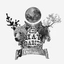 4.hay babies.jpg