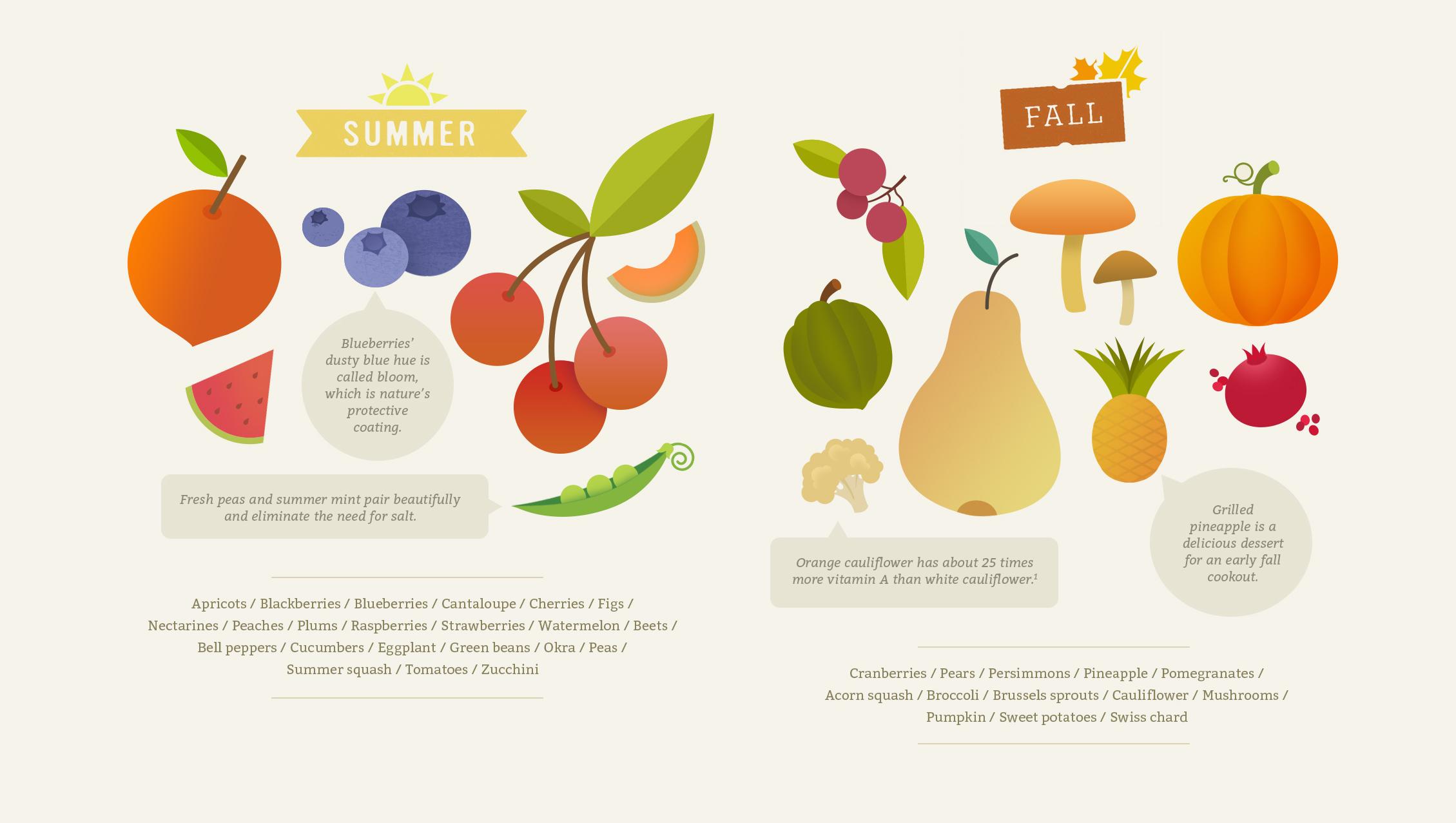 Infographic_Food_Seasonal_Guide_McQuade_Design2.jpg