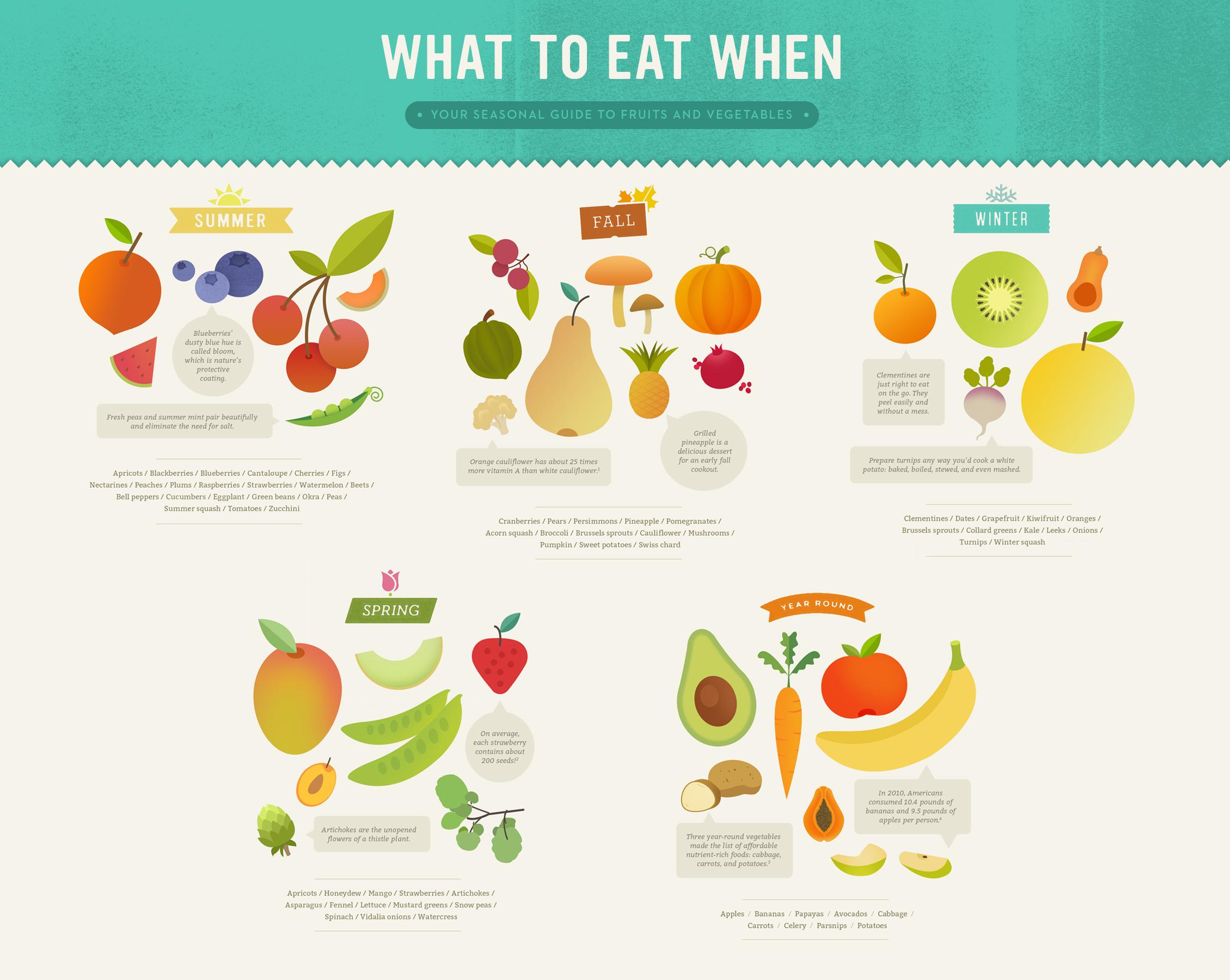 Infographic_Food_Seasonal_Guide_McQuade_Design.jpg