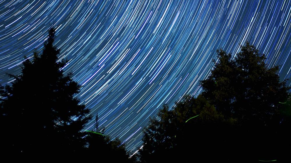 Pines Star Trail Web.jpg