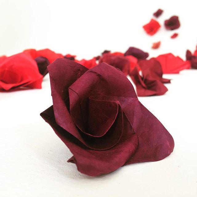 Ogni cosa a suo tempo  #origami #rose #papier #paper #paperdesign #setdesign #photography #art #artphotography #mai #maggio #may #beauty #beauté #bellezza #pure