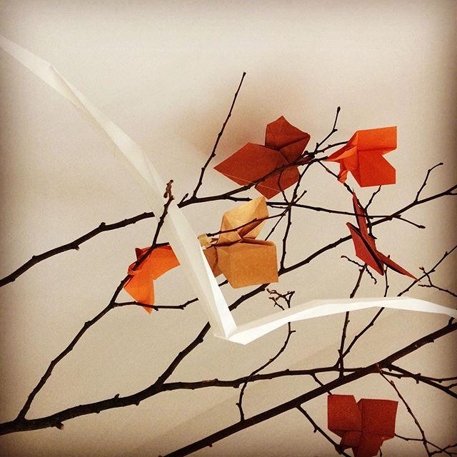 Si vous ne l'avez toujours pas vu.. Il y a presque 2 ans, j'ai conçu cette installation pour l'expo IN SILENZIO chez l'atelier @ex.anima . Elle a ensuite inspiré un spectacle théâtral et aujourd'hui, elle est prête à partir (pas toute seule) pour une nouvelle aventure. Ça reste toujours l'une des créations que j'aime le plus.  Pour les feuilles j'ai utilisé un model de P. Engel et pour l'oiseau j'ai «stalkerisé» les œuvres de mon Origami Sensei , Luisa Canovi.  En fin/ finalement je suis arrivée à reproduire l'une des ses œuvres.  #origami #art #installation #scenography #paperdesign #nature #expo #inspiration #papier #paper #bordeaux #bordeauxmaville