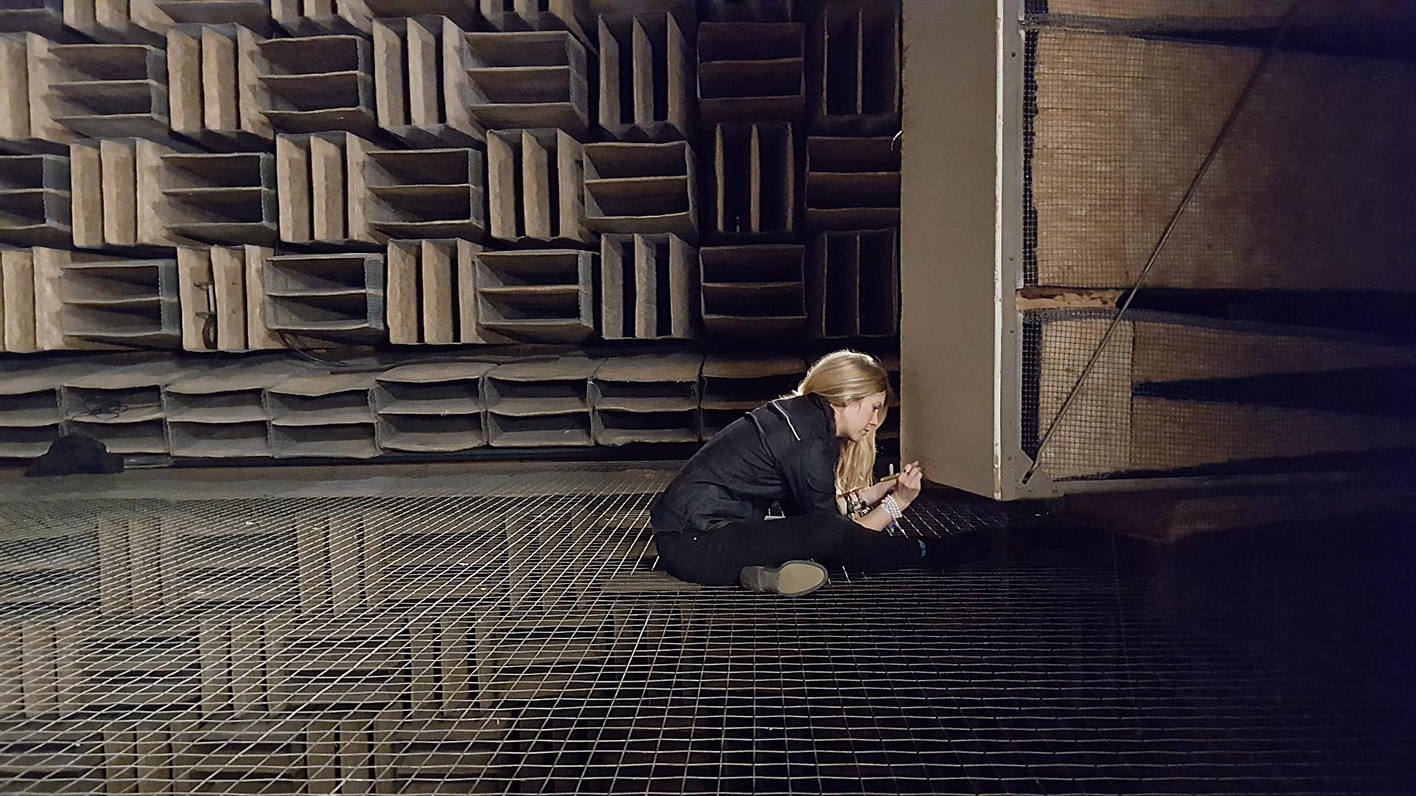 Inscribing the Chamber Door